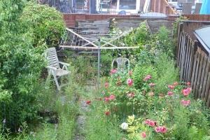Tuin Laten Doen : Verwaarloosde tuinen bemoeien of laten kjenning