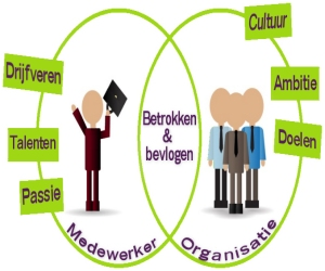 Organisatie ontwikkeling kjenning - Ontwikkeling m ...